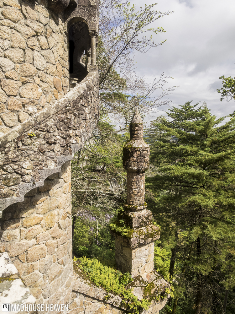 View from a Gothic tower overlooking the some pines on the Sintra hillside
