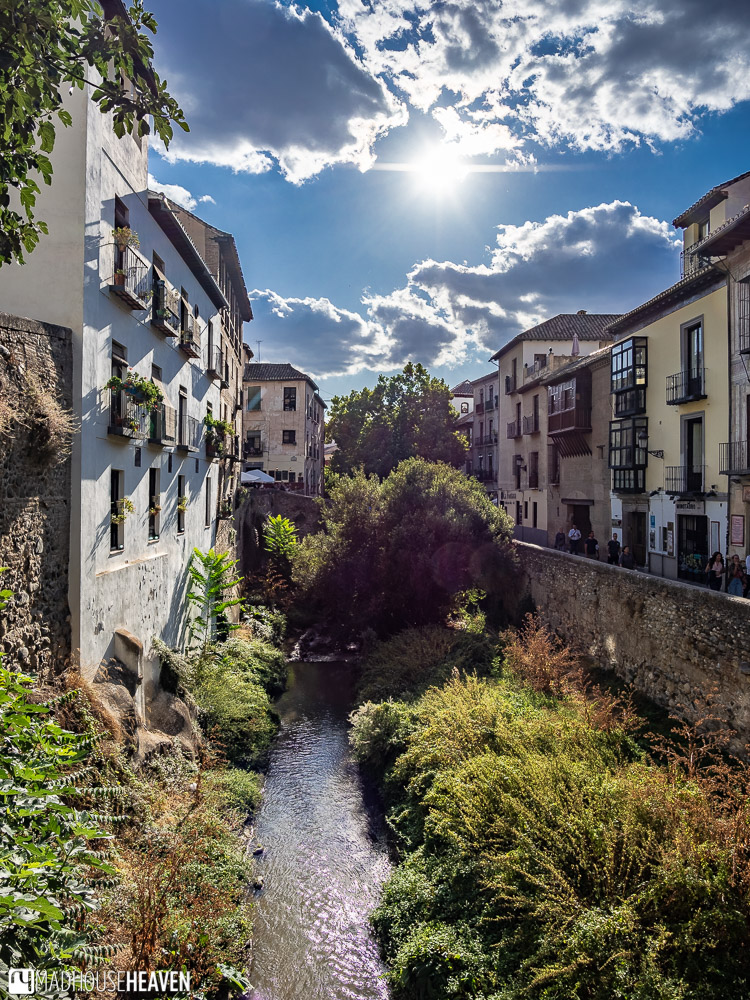 A cute river running through old European streets, with sunlight twinkling off its surface and vegetation over-growing its banks